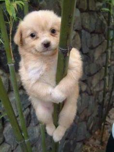 I'm hanging on!