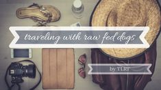 How to Travel with Your Raw Fed Dog ⋆ The Lazy Raw Feeder