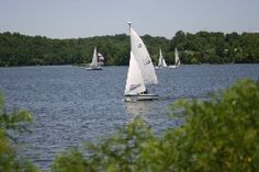 Ring in Spring in Clinton County - We are so fortunate to have Cowan Lake State Park located in Clinton County, Ohio...