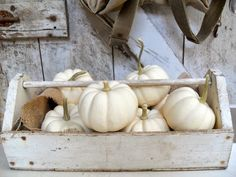 fall decor: white pumpkins/burlap