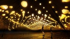 Forest of Resonating Lamps | teamLab / チームラボ