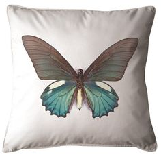 45cm x 45cm  Explore your inner Entomologist with our beautiful and dazzling Butterfly Cushion  Comes with a 100% Australian Made insert and FREE SHIPPING