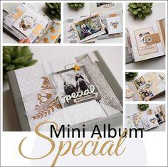 """Mini album """"special"""" : l'intégrale et kits en vente"""