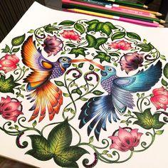 Humming Birds Secret Garden. Beija-flores Jardim Secreto. Johanna Basford
