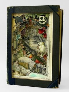 animals, art, book, collage, cutout, like