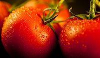 De câte ori nu vi s-a întâmplat să cumpăraţi din supermarket roşii care păreau apetisante, ca să descoperiţi acasă că erau lipsite de gust?