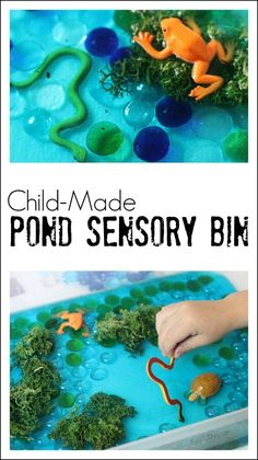 Child-Made Pond Sensory Play Idea - the toys used may not be completely accurate, but tons of playful learning can take place with this fun bin!