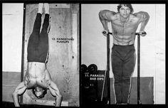 Arnold Schwarzenegger Handstand Push Ups / Dips #barstarzz
