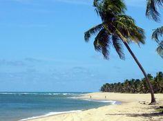 praia-do-frances-alagoas