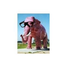 Pink Thing of the Day: Pink Elephant | The Worley Gig ❤ liked on Polyvore