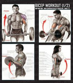 Bicep Workout Part 1 - Healthy Fitness Exercises Gym Low Tricep - Yeah We Train ! See The 3 Week Diet Sixpack Workout, Biceps Workout, Gym Workouts, Fitness Exercises, Treadmill Exercises, Chest Exercises, Bodybuilding Training, Bodybuilding Workouts, Sport Fitness