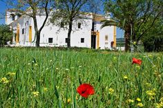 Hacienda El Santiscal (Cádiz)