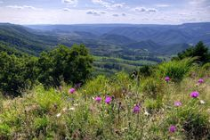 Looking southwest from Nelson Sods on North Fork Mountain, West Virginia.   By Rick Burgess