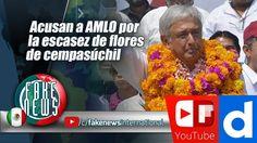 Acusan a AMLO por la escasez de flores de cempasúchil