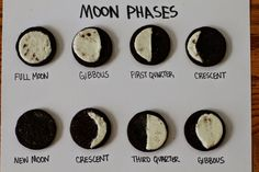 Teaching Science With Lynda: Total Lunar Eclipse and Moon Phases Lesson Ideas