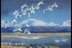Whoopers in Malltraeth, by Charles Tunnicliffe
