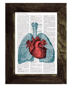 Heart and Lungs  Anatomy  book page Print on Vintage Encyclopedic page- upcycled gift- Anatomy art on Etsy, $7.99