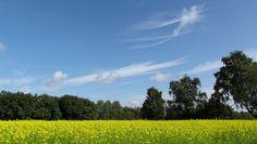 Een zonnige najaarsdag (foto: Margreet van Vianen, Tilburg). 20 september 2015