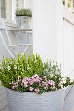 Outdoor Planters, Garden Planters, Farm Gardens, Outdoor Gardens, Small Garden Inspiration, Front Door Plants, Garden Cottage, Home And Garden, Fall Flowers