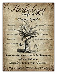 Herbology Print inspired by Harry Potter
