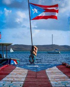Paros, Puerto Rico, Isla Island, El Yunque Rainforest, Puerto Rican Flag, Puerto Rican Culture, Crystal Clear Water, Famous Places, Places To Go