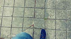 Alvo on foot
