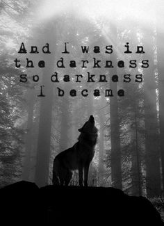Discover and share Wolf Quotes About Love. Explore our collection of motivational and famous quotes by authors you know and love. Wolf Spirit, Spirit Animal, Dark Quotes, Me Quotes, Light Quotes, Lone Wolf Quotes, Wolf Qoutes, The Darkness, Darkness Quotes