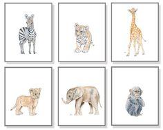 Safari Animal Art Safari Nursery Print. Baby Animal Nursery Jungle Nursery Art Kids Decor Elephant Giraffe Lion Tiger Zebra Monkey Set of 6.