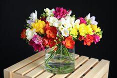 Cut Flower Food, Cut Flower Garden, Flower Garden Design, Orange Flowers, Summer Flowers, Cut Flowers, Colorful Flowers, Freesia Flowers, Spring Blooms
