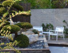 Oosterse tuin met bonsaiboom.