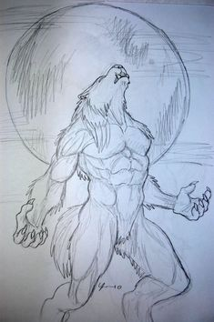 An appealing fuck-ton of werewolf references. Werewolves are a tad simpler to define than aliens or natural deformities; virtually every werewolf is depicted as (obviously) a half human half wolf. In virtually every instance, the human grows larger,. Werewolf Tattoo, Werewolf Art, Werewolf Drawings, Cool Art Drawings, Art Drawings Sketches, Animal Drawings, Dark Fantasy Art, Horror Art, Furry Art