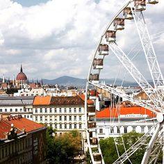 Programturizmus az InstagramonTudtad, hogy Magyarország legnépszerűbb programkereső oldala Instagramon is jelen van? Kövess minket ott is! #szállás #fesztivál #vásár #ünnep #látnivaló #szabadidő #kultúra #család #gasztronómia #pihenés #mitcsináljak #magyarország Budapest, Ferris Wheel, Opera House, Fair Grounds, Building, Travel, Instagram, Viajes, Buildings