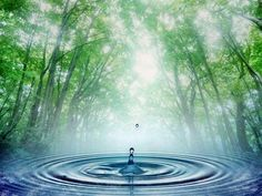 Be the drop that freely falls and becomes one with water… You might not be able to perceive the ripples you have created right away But water will allow you to feel how their love Comes back to you again and again