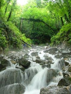 آب پری رویان | مکان بین مازندران