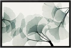 Neutral charm wall art, Art.com Ginkgo Dance Framed Wall Art
