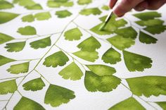 """Southern Maidenhair"" Adiantum capillus-veneris in watercolor. I painted one fan-shaped leaflet at a time allowing the leaves to dry completely before moving on to an overlapping pair there were 74 in this arrangement. This original sold but I am accepting commissioned work. Email me through my site to learn more!"