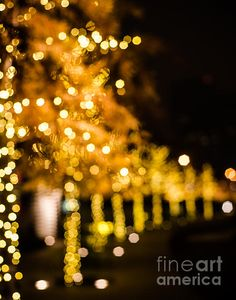Trees covered in golden bokeh light. Fine art photo by Sonja Quintero http://fineartamerica.com/featured/golden-bokeh-trees-sonja-quintero.html