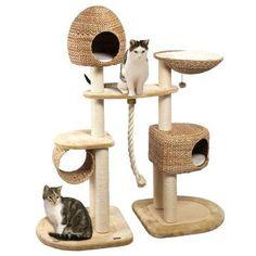 Комплекс для совместного проживания двух кошек