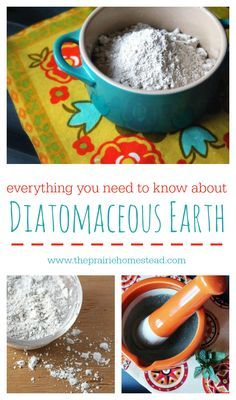 The DEFINITIVE post on diatomaceous earth. Tips for using it for health issues, around the garden, with animals, and more.