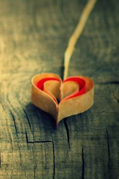 11 Best Love Images Mobile Wallpaper Wallpaper For Phone Wall Papers