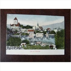 Switzerland Spiez am Thunersee Lake Thun vintage colour UPU postcard church cow