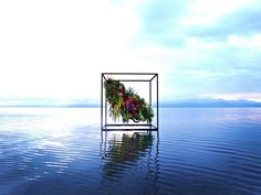 Realcolor&Realimage by Makoto Azuma, Japan
