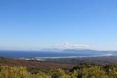 It was in 1991 that the Lutzeyer family first set eyes on a small farm on the fynbos slopes overlooking Walker Bay - and they couldn't believe the beauty they saw. Small Farm, Nature Reserve, South Africa, Southern, Mountains, Landscape, World, Places, Floral