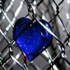 blue heart trapped in a chained fence Oh My Heart, Happy Heart, Heart Beat, Love Blue, Blue And White, Color Splash, Color Pop, Cobalt Glass, Cobalt Blue