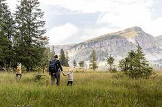 LIFEforFIVE-Wandern-mit-Kindern-Wandern im Moor bei der Lombachalp.