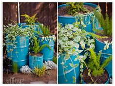 old oil drum planters Barrel Planter, Planter Boxes, Planter Ideas, Oil Barrel, Outdoor Sinks, Barrel Projects, Recycling, Metal Drum, Oil Drum