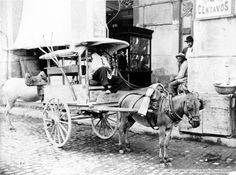 Photo shows view of a fruit vendor horse cart in Havana, Cuba. Photo dates to 1904.