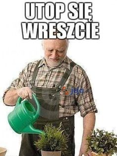 Wtf Funny, Funny Jokes, Hilarious, Funny Images, Funny Photos, Polish Memes, Weekend Humor, Funny Mems, Quality Memes