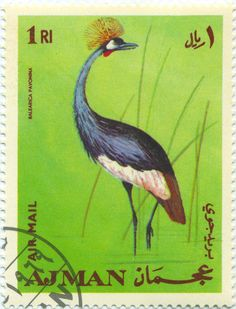 Buy and sell stamps from Ajman. Meet other stamp collectors interested in Ajman stamps. Sell Stamps, Stamp Catalogue, Wild Creatures, African Animals, Fauna, Stamp Collecting, Digital Stamps, Bird Art, Postage Stamps