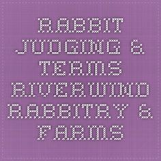 Rabbit Judging & Terms - Riverwind Rabbitry & Farms